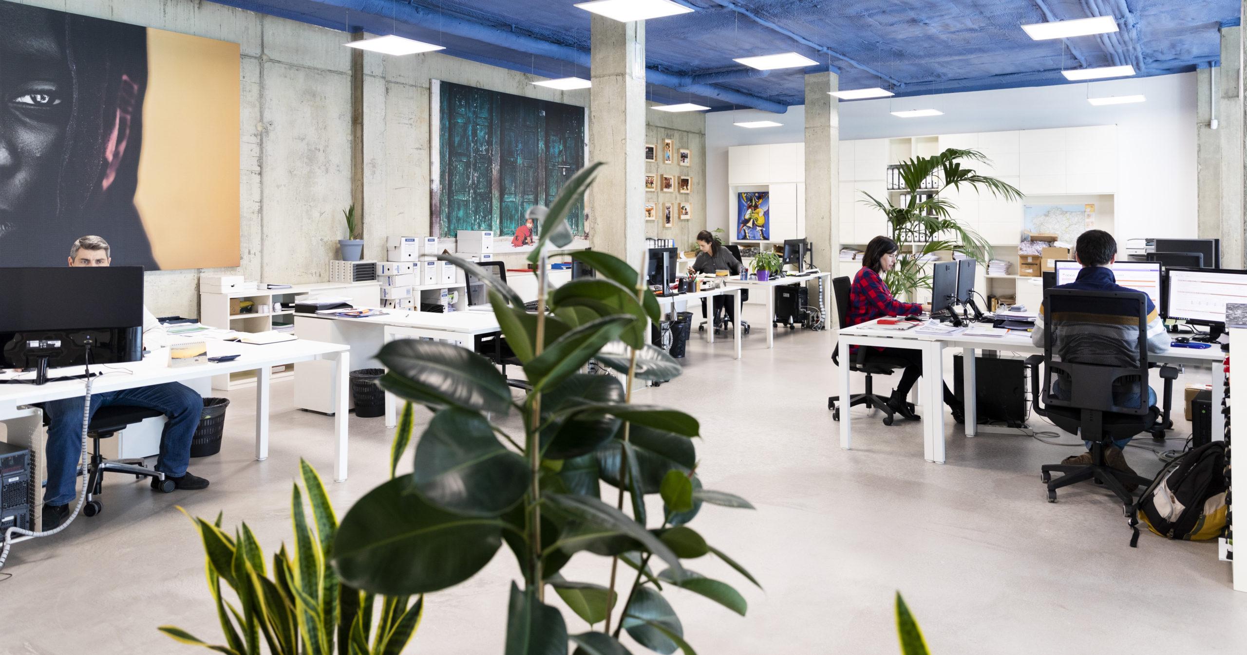 Objetivo oficina empleados