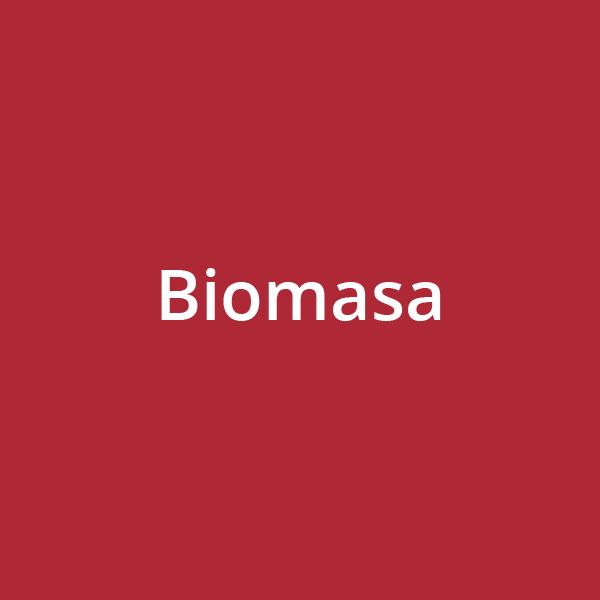 Biomasa descripción texto